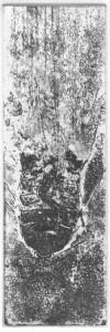 Fabien Yvon gravure chutes de fossiles 1