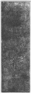 Fabien Yvon gravure chutes de fossiles 10