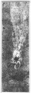 Fabien Yvon gravure chutes de fossiles 13