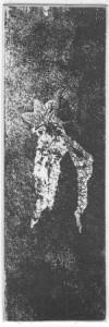 Fabien Yvon gravure chutes de fossiles 14