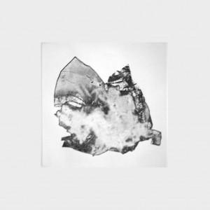 Fabien Yvon gravure fossiles 10