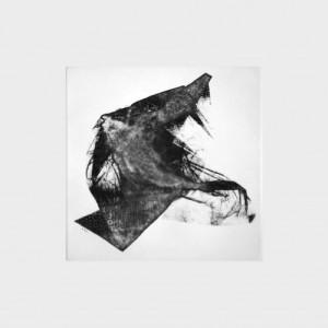 Fabien Yvon gravure fossiles 13