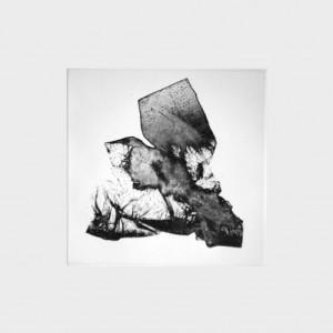 Fabien Yvon gravure fossiles 2